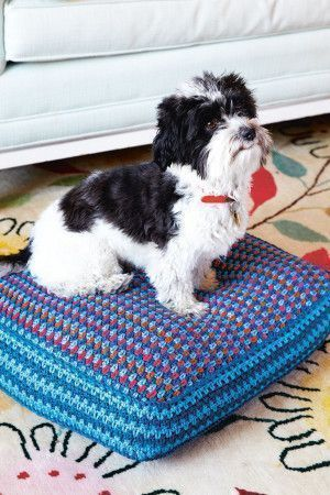 Colourful crocheted dog cushion