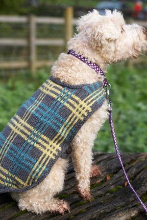 Knitted plaid dog coat for your stylish best friend