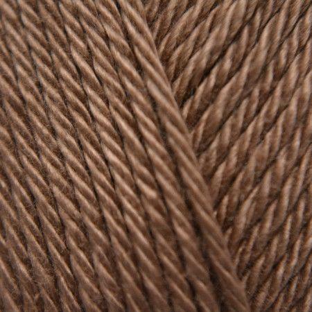 Hazelnut (503)