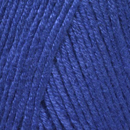 Blue Jay (087)