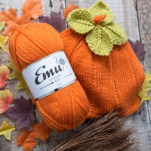 Emu Pumpkin Hat