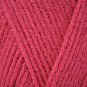 Raspberry (124)