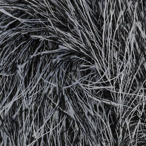 Badger (498)