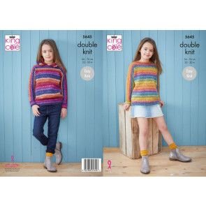 Sweater and Hoodie in King Cole Bramble DK (5645)
