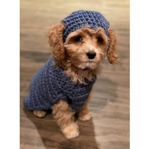 Puppies First Sweater and Hat in Lion Brand Heartland (M20350)