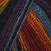 Stylecraft Wondersoft Merry Go Round DK - Dark Rainbow (3153)