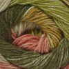 Stylecraft Batik Swirl - Poppyfield (3734)