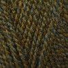 Stylecraft Highland Heathers DK - Moss (3752)