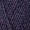 Stylecraft Life DK - Deep Purple (2495)