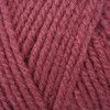 Stylecraft Special Aran - Raspberry (1023)