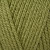 Stylecraft Special Aran - Meadow (1065)