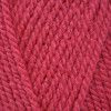 Stylecraft Special Aran - Pomegranate (1083)