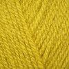 Stylecraft Special Aran - Mustard (1823)