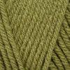 Stylecraft Special Chunky - Meadow (1065)