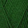 Stylecraft Special DK - Green (1116)