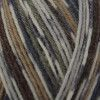 West Yorkshire Spinners Signature 4 Ply - Owl (877)