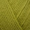 West Yorkshire Spinners ColourLab DK - Pear Green (186)