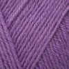 West Yorkshire Spinners ColourLab DK - Thistle Purple (717)